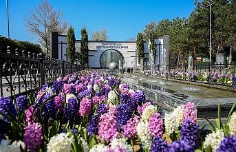 Çekmeköy'de Şehit Üsteğmen Arif Kalafat Doğa Parkı Kapılarını Açıyor