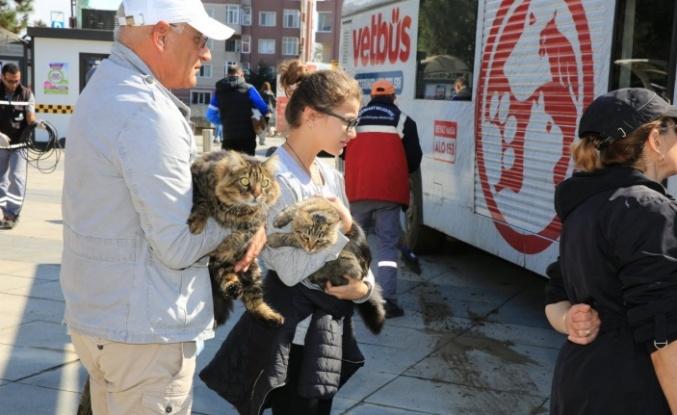 İBB Vetbüs Çekmeköy'de Hayvanları Sağlık Taramasından Geçirdi